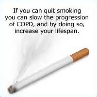 quit smoking slow picture 15