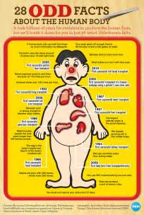 human body cleanse information picture 11