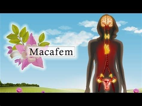 where to buy macafem hormone supplement in south picture 2