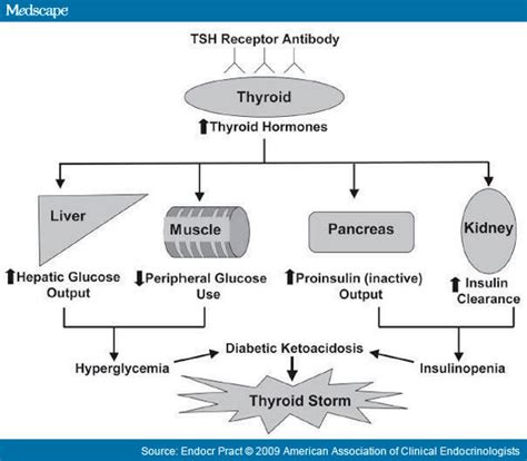 can an unbalanced thyroid effect s disbetic picture 3