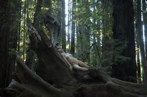 falls asleep in the woods picture 2