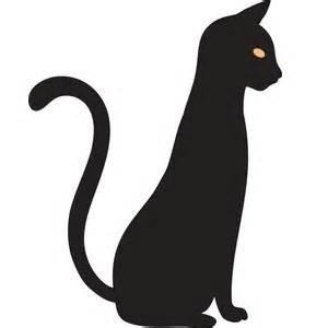 feline irritable bowel picture 3
