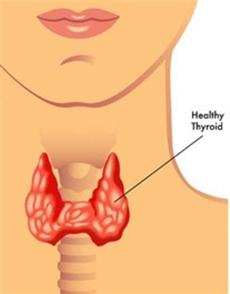 what does it mean when your thyroid is picture 12