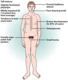 testosterone science definition picture 5