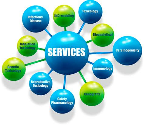 services picture 7