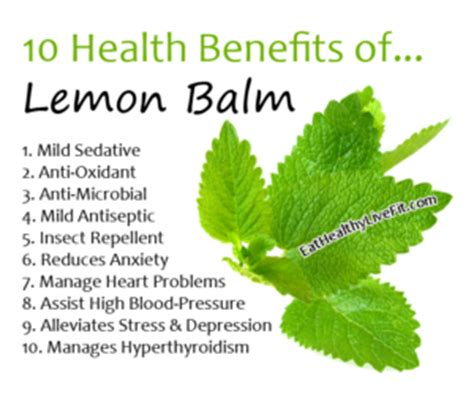 lemon balm for high blood pressure picture 3