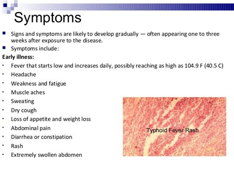 bladder infection low grade fever picture 2