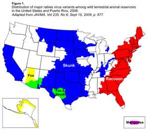 new jersey genital herpes rates picture 9