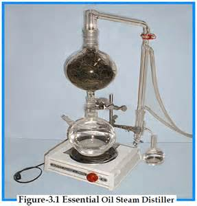 home plant oil steam extractors picture 3