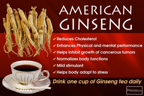 benefits of ginseng in rogin-e picture 7