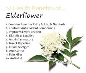 herbal anti-inflammatory picture 10