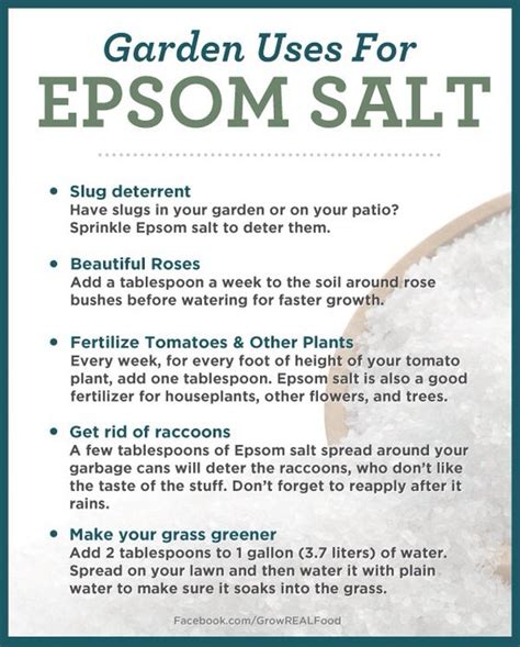 what is epsom salt used for in a picture 6