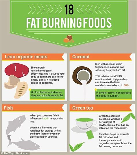 fatfreekitchen weight loss fat burning foods picture 4