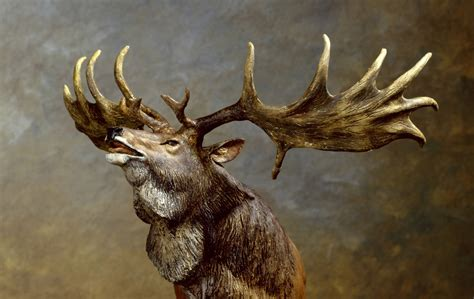 largest natural deer picture 1