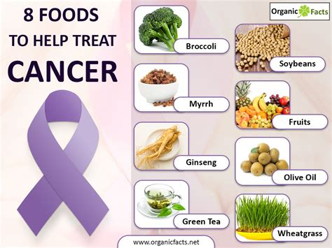 a diet for post treatment of breast cancer picture 14