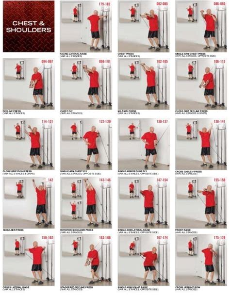 4life back exerciser picture 3