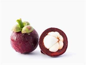 garcinia fruit extract picture 5