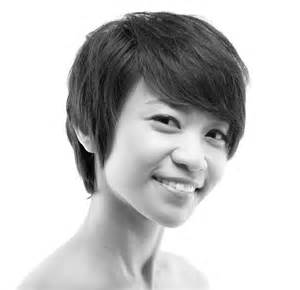 american short hair for sale picture 3