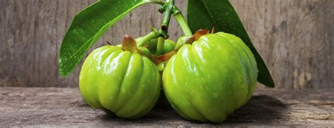 can garcinia cambogia help with erectile picture 3