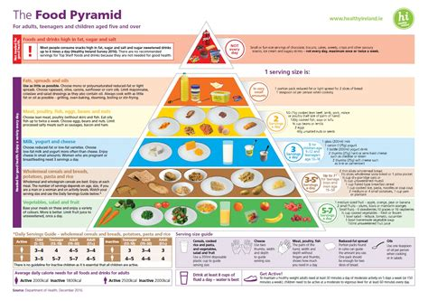 breads and cereals-australian dietary guidelines picture 11