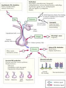 prolactin sleep picture 6