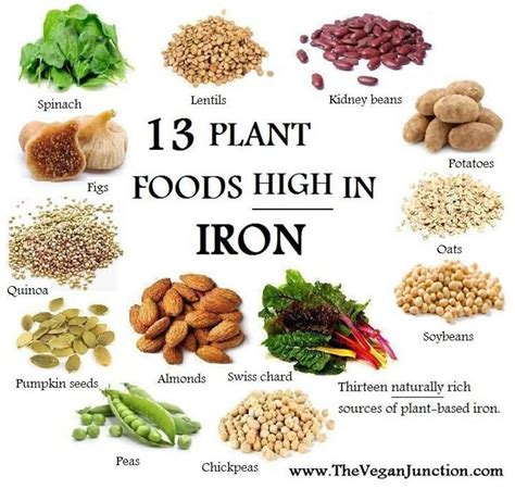 certain foods and thyroid function picture 7