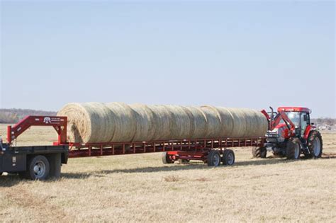 alfalfa hay for sale picture 15