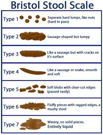 undigested food in bowel movements picture 14