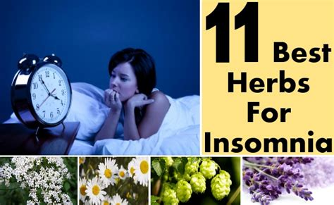 what herbs that can forced people to sleep picture 1