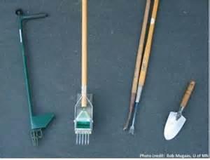tools used to smoke marijuana picture 3