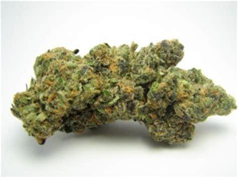 herbal marijuana picture 3