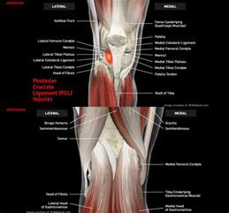 sudden joint pain picture 6