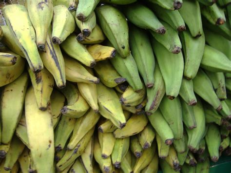 cooking plantains picture 2