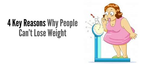why we prescribe balance diet for weight loss picture 2