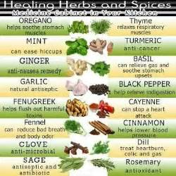 ordre list of herbal medicine picture 11