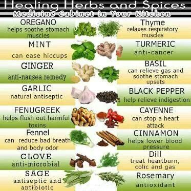 list of herbal plant in abortion picture 19