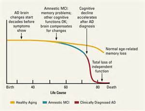 imaging and the aging brain picture 15