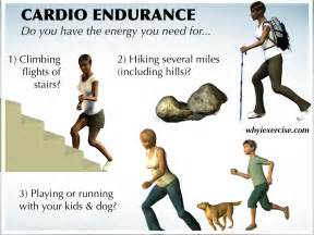 definition muscle endurance picture 9