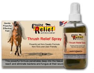 relief antimicrobial spray picture 3