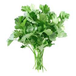 useful responces to the parsley and vit c picture 3