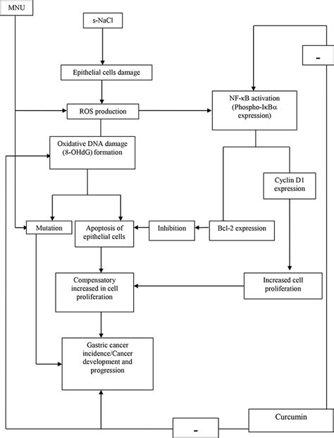 chemical and drug-induced liver disease picture 9