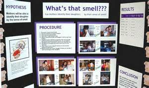 science fair project effect of peppermint scent on picture 9