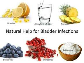 canine bladder infections holistic picture 6