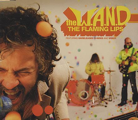flaming lips bist picture 13