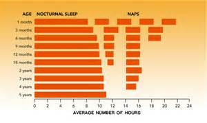 newborn sleep pattern picture 5