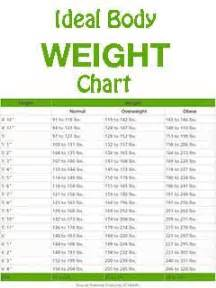 chart my weight loss picture 1