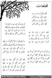 book in urdu picture 6