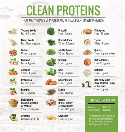 protein healthy diet for boils picture 11