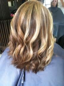 blonde highlights for the hair picture 10
