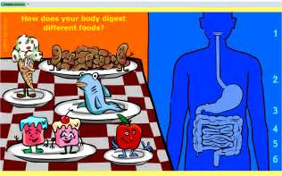 digestion animation picture 1
